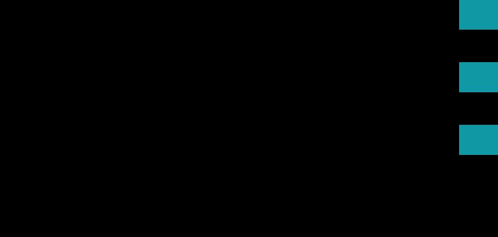 IDS_Logo_mit_Webadresse